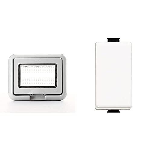 BTicino 25603 Coperchio, 3 Moduli, Grigio & Sam5001F Interruttore 1P, 16 A, Bianco