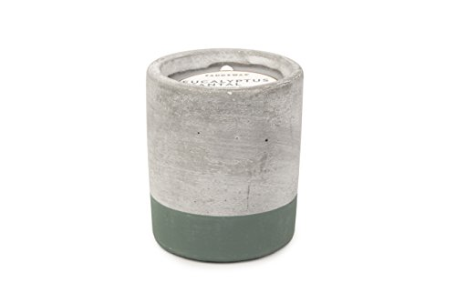 Paddywax Urban Collection Scented Soy Wax Candle, 3.5-Ounce, Eucalyptus & Santal