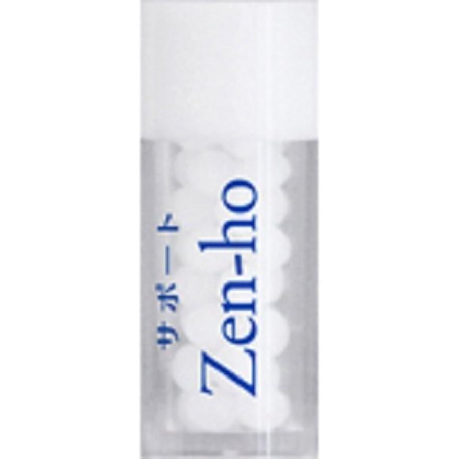 吸収剤来て荷物ホメオパシージャパンレメディー サポートZen-ho(小ビン)