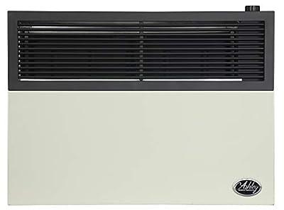 Ashley Hearth Products DVAG17L 17,000 BTU Direct Vent Propane Heater, Cream