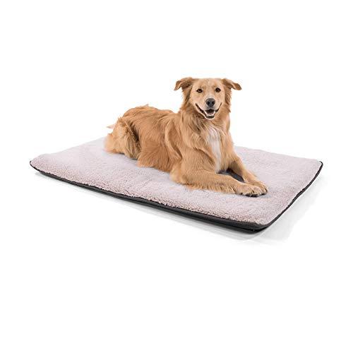 brunolie Finn große Hundedecke, geruchsneutral, hygienisch und rutschfest, waschbare Hundematte in Beige, passend für den Kofferraum, Größe L (120 x 80 x 5 cm)