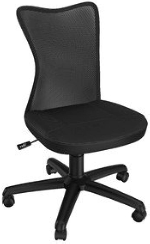 Z-Line Designs Mesh Task Chair, Black