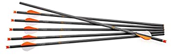 CenterPoint Archery CP400 Select 400-Grain 20-Inch Carbon Arrows AXCCA20TPK Pack of 6