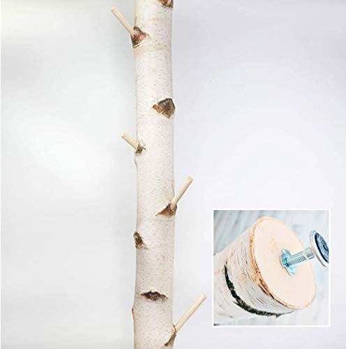 Weiße Birkenstamm-Garderobe mit Stellfuß getrocknet - bis 3 Meter Länge