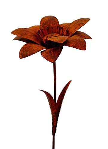 Amicaso Blumenstecker Edelrost Gartenblume Gartenstecker Rostoptik Metall Dekoration