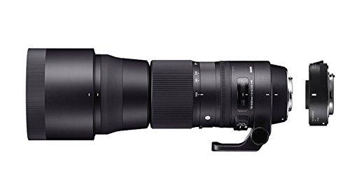 SIGMA ZB954 - Objetivo SIGMA 150-600mm F5-6.3 Contemporary +TELE CONVER.TC-1401 para Canon, color negro