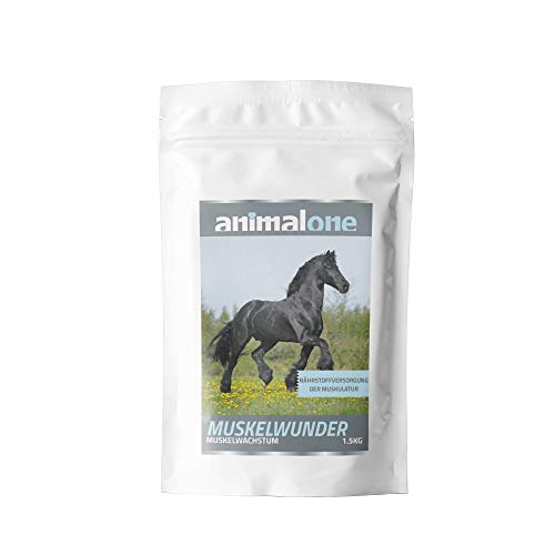 equizone - MUSKELWUNDER 1,5 kg - für Pferde - für Muskelaufbau & Muskelkraft - höheres Leistungsvermögen - Kraftfutter - Nahrungsergänzung fürs Pferdefutter mit Colostrum & Spirulina