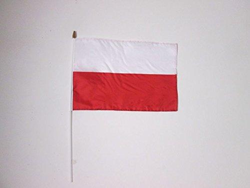 AZ FLAG Drapeau Pologne 45x30cm HAMPE Blanche - Lot de 10 Drapeaux polonais 30 x 45 cm