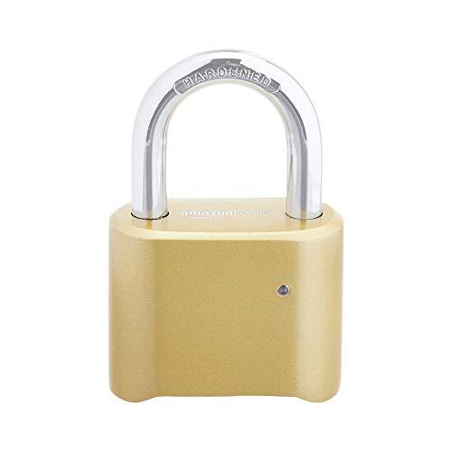 Amazon Basics – AB-PL105 Vorhängeschloss, 1 Stück, goldfarben