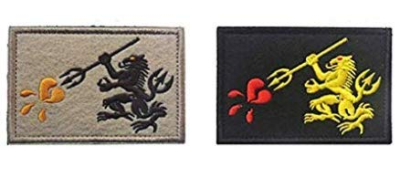 2pcs NST6 Navy Seal Team 6 DEVGRU Lion Military Patch Fabric Embroidered Badges Patch Tactical Stickers for Clothes with Hook & Loop (2pcs)