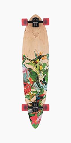 Landyachtz Totem Paradise Complete Long Board