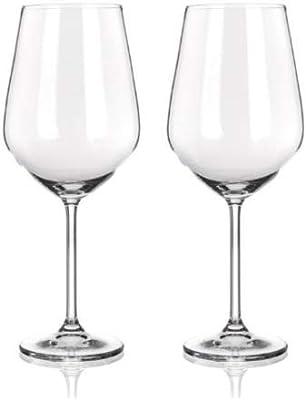 Komodo Magnum Goblets Wine Glasses - Holds a whole bottle of wine (25.6 oz, 2-Piece)