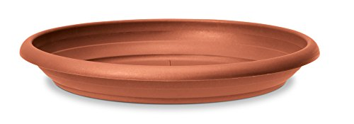 Scheurich Untersetzer aus Kunststoff, Terracotta, 24 cm Durchmesser, 3,5 cm hoch