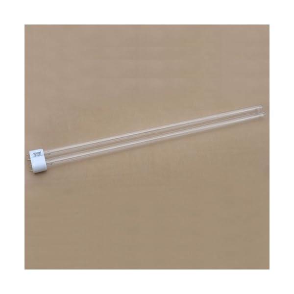 Golden-Tulip-55-Watt-UVC-Leuchtmittel-Lampe-Ersatzrhre-UV-C-RhreErsatzlampe-213415