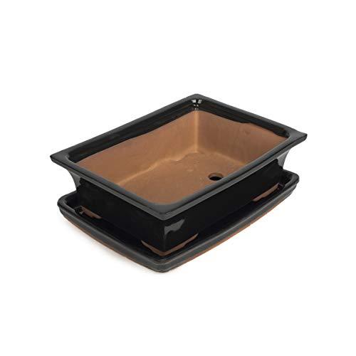 Keramik Bonsaischale - SCHWARZ 19 x 15 x 6 cm - hochwertiger Blumentopf mit Unterteller/Schale - geflammt für drinnen und draussen, eckig - Indoor/Outdoor