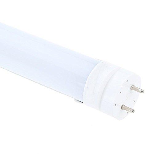 ACAMPTAR Ahorro Energia T8 60cm LED 10W (Equivalente a Fluorescente 40W) Tubo Lampara Luminario Fluorescente Recambio No lastre No UV & IR Interior