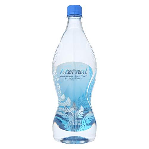 Eternal Naturally Artesian Water - Case of 12 - 1 Liter