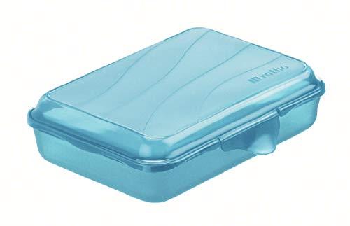 Rotho Fun flache Vesperdose 0,45l mit Klickverschluss, Kunststoff (PP) BPA-frei, blau, 0,45l (16,0 x 11,0 x 4,0 cm)