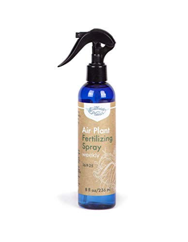 Air Plant Weekly Fertilizing Spray, 8 oz - Specially formulated Blooming Fertilizer for Tillandsia and bromeliad houseplants - Fine Mist Spray Bottle Will Encourage Air Plants to Grow More and Bloom!