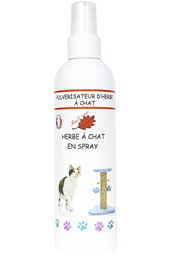 Herbe à chat en spray