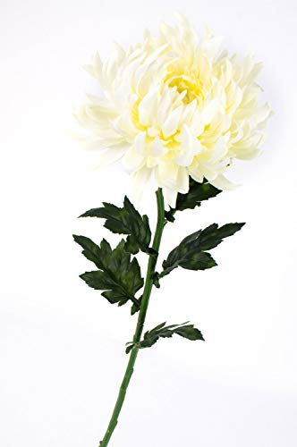 artplants.de Set 6 x Künstliche Chrysantheme, Creme-weiß, 64cm, Ø 16cm - künstliche Blume - Kunstblume