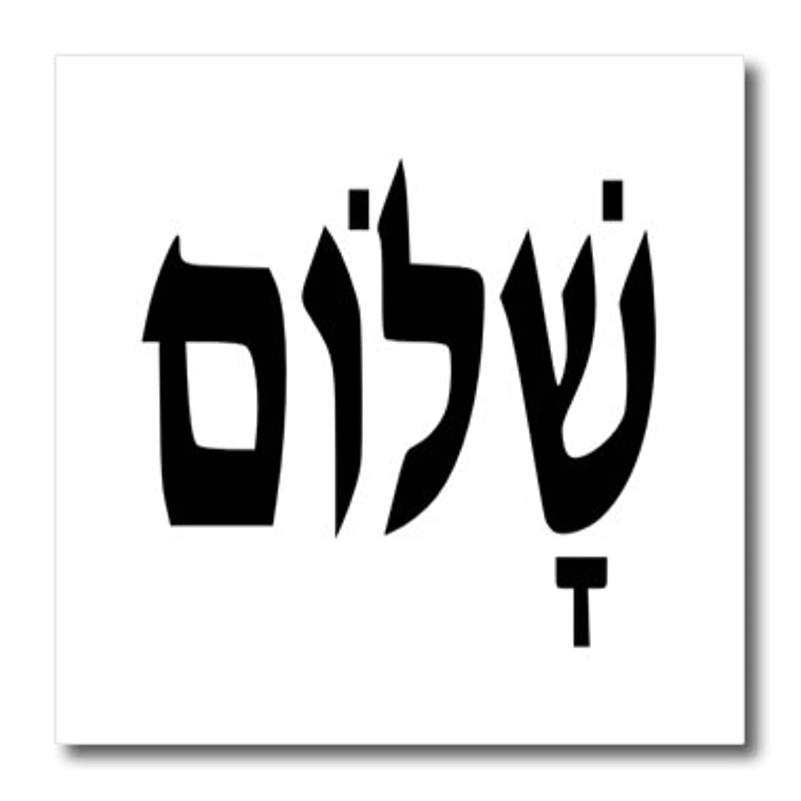 3dRose ht_109483_1 Hebrew Word Shalom Meaning Hello or Peace-Iron on Heat Transfer for White Material, 8 by 8-Inch