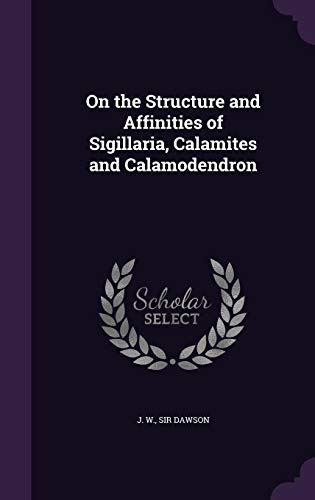 On the Structure and Affinities of Sigillaria, Calamites and Calamodendron