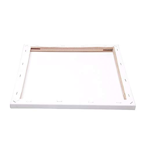 RENSHENKTO Blank Canvas Artist Stretched Canvas Wooden Board Frame for Canvas Canvas for Acrylic Painting