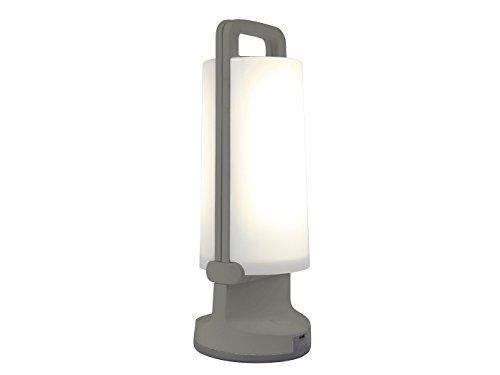 Eco-Light Solar-Leuchte Dragonfly mit Solarpanel und USB Ladefunktion, tragbar für viele Verwendungszwecke Z.B. Gartenparty, Festbeleuchtung, Wegelicht oder zur Sommerlichen Atmosphäre IP54, silber