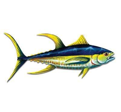GT Graphics Yellowfin Tuna - 3