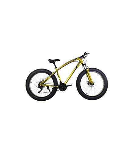Beste Fat Bike Fahrräder – Kaufberatung