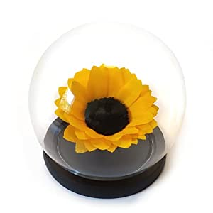 preserved sunflower in a glass dome, real forever rose, forever sunflower, roses, eternal sunflower, preserved sunflower arrangement silk flower arrangements