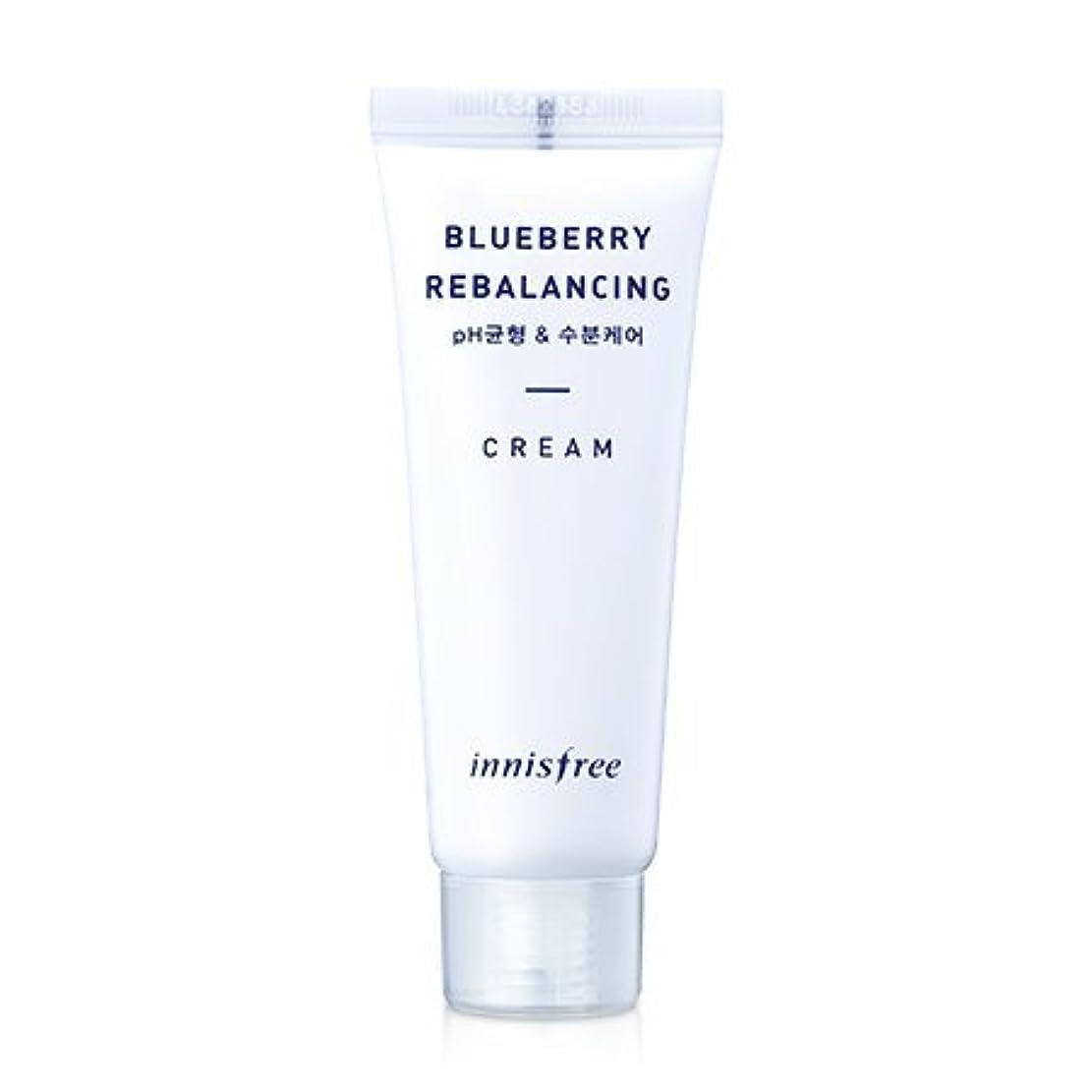 栄養件名文[innisfree(イニスフリー)] Super food_ Blueberry rebalancing cream (50ml) スーパーフード_ブルーベリーリベルロンシンクリーム[並行輸入品][海外直送品]