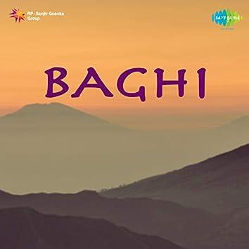 Baghi (Original Motion Picture Soundtrack)