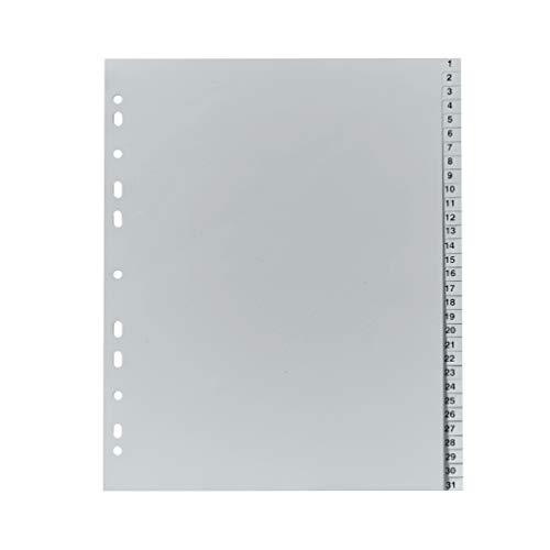 Original Falken PP Kunststoff-Register überbreit. Für DIN A4 24,5 x 29,7 cm volle Höhe Druck 1-31 31 Blatt grau Ringbuch Ordner Plastikregister für die ideale Ablage von Prospekthüllen
