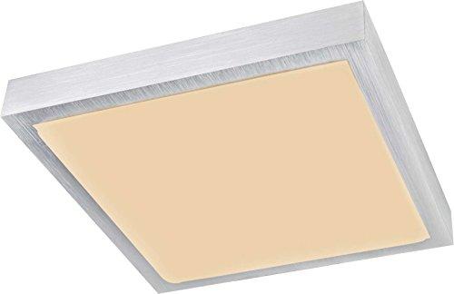 LED plafondlamp vloer plafondverlichting vierkant vloerlamp aluminium (plafondlamp, keukenlamp, 30 cm, 1 x 12 Watt, warmwit)