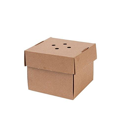 BIOZOYG 100x Burger-Box Karton mit Klappdeckel I Bio Hamburger Karton Kompostierbare Verpackung Burger aus Kraftkarton mit Lochung I Stabile to Go Verpackungen Karton braun 13x13x10cm, quadratisch