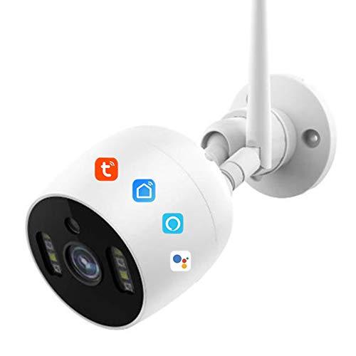 Cámara IP inalámbrica con wifi, Tuya Smart Life, resistente al agua, 1080P, cámara de vigilancia de seguridad con detección de movimiento por infrarrojos, funciona con Alexa/Google,Camera + 16g