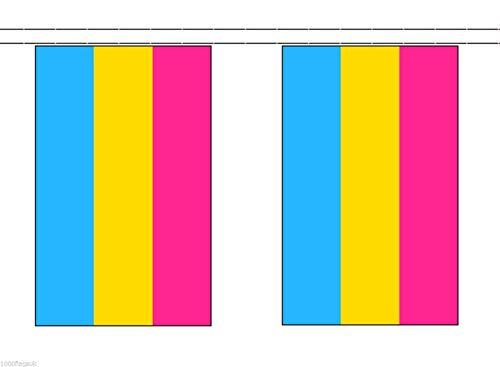 Wereld Vlag Winkel Panseksueel 6 Meter Bunting 20 Vlaggen Gay Pride
