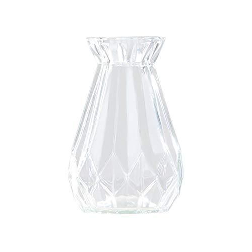 Toruiwa. 1x Hyazinthe Glasvase,Hyazinthenglasm,Hyazinthen Glas,Transparent Blüten Vasen,für Sukkulenten/Luftanlagen Pflanzen Dekoration(14,5x8cm,Weiß)