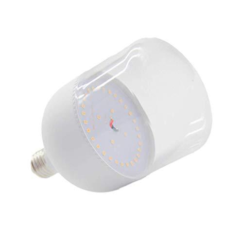 Plant Grow Light Bulb Full Spectrum LED Bulb Balanced Lighting Seed Daylight Lamp Flowers Greenhouse Indoor Houseplants (12W)