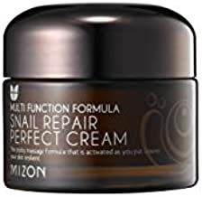 Mizon Snail Repair Perfect Cream Hydration and Nutrition with Snail Filtrate, Paraben Free 50ml 1.69 fl oz