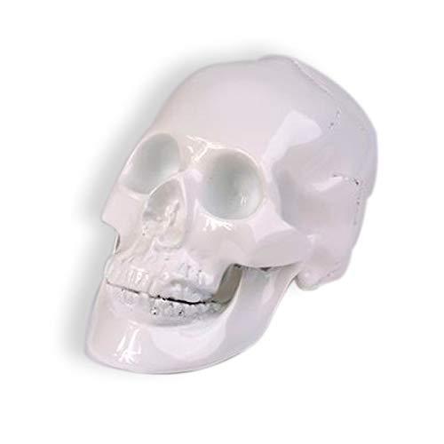 KOH DECO Crâne Blanc en résine