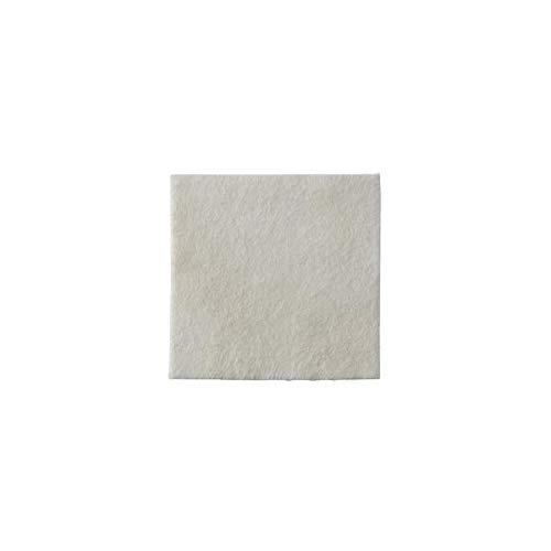 Coloplast Biatain Alginate Ag - 10 unidades