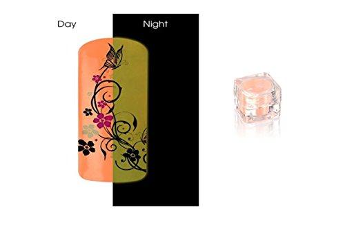 Poudre Phosphorescent Gel uv ongles - Brille la nuit - Pastel Saumon (Rose orangé) REF8582
