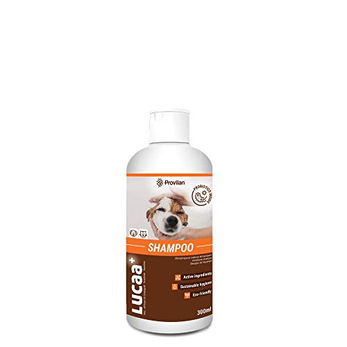 LUCAA+ Champú para Mascotas/Perros/Gatos 1L | Producto sostenible con Probióticos | Bio, Vegano & Natural