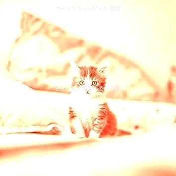 チャーミング(眠っている猫)