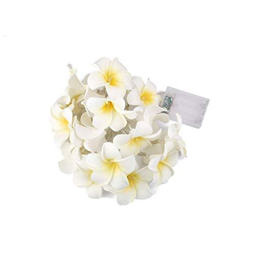 FBGood Frangipani LED-Lichterkette mit gelben Blumen, LED-Lichterkette, Dekoration für Schlafzimmer, Hochzeit, Urlaub, Herz, dekorative Lichter A