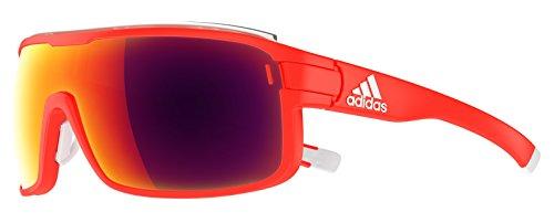 biathlon brille