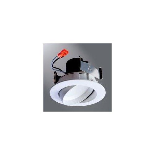 Halo 4' Adjustable Gimbal LED Module RA406927WH